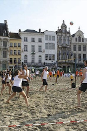 Mosaic Primary Beach Volley